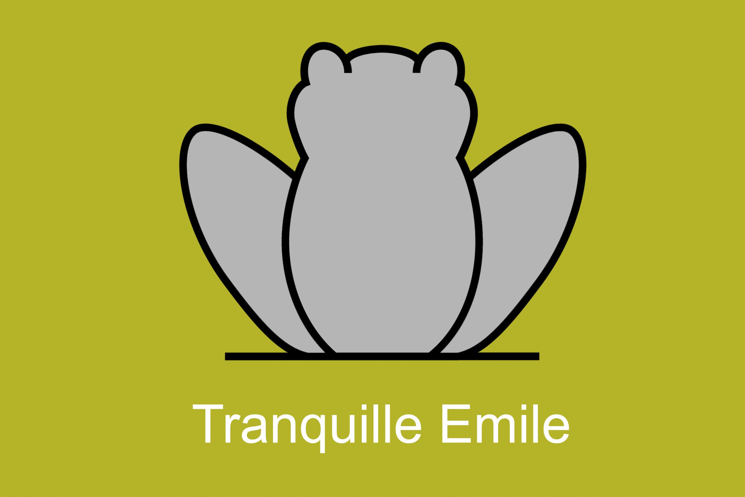 Lien snapchat TranquilleEmile