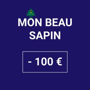 mon-beau-sapin-noel-100