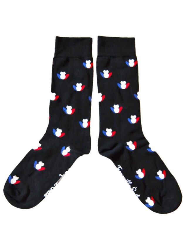 chaussettes-made-in-france-tranquille-emile-les-grenouilles-noires-tricolore-3