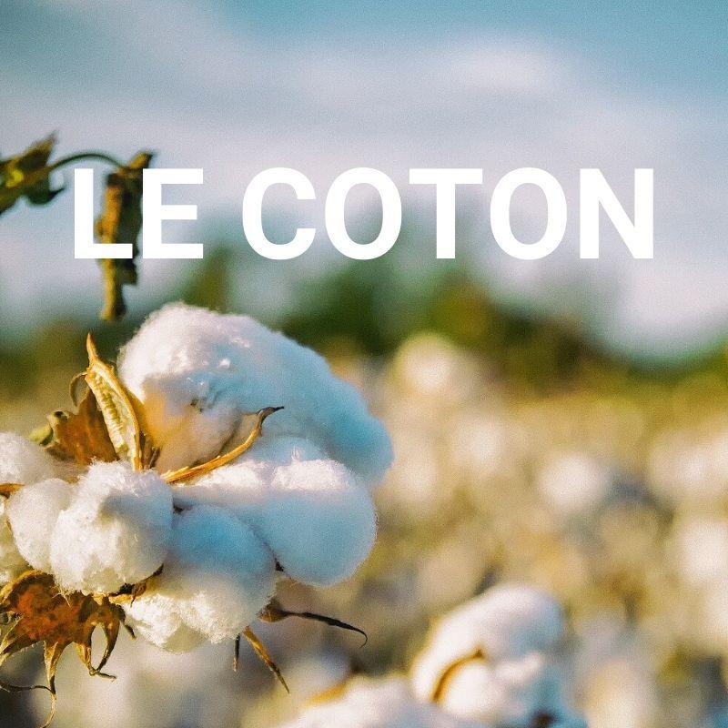le-coton-tranquille-emile
